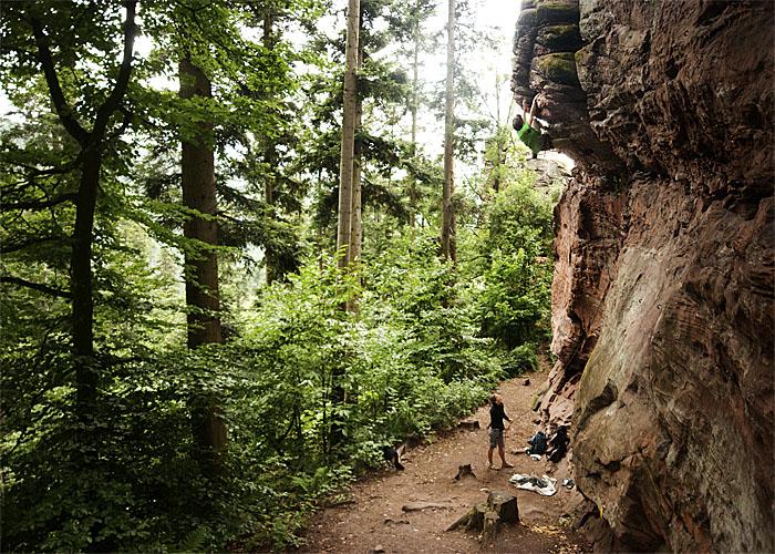 Un par de desconocidos escalando en el bosque